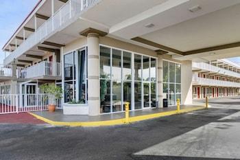 克里爾沃特 - 拉哥羅德威飯店 Rodeway Inn Clearwater-Largo