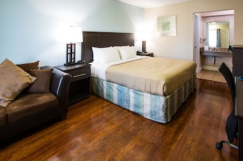Room, 1 King Bed (Pet Friendly)