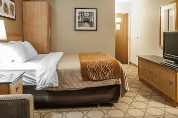 Standard Room, 1 Queen Bed, Non Smoking (Stair Access Only)