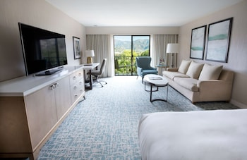 Room, 1 King Bed, Mountain View