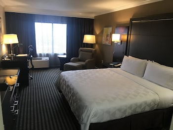 Room, 1 King Bed, Accessible, Non Smoking (Hearing, Mobility, Bathtub)