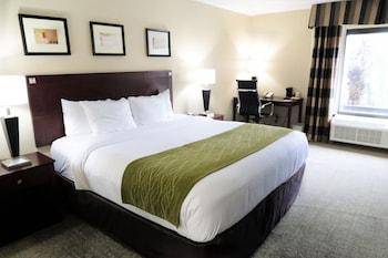 西南高速公路西方公園凱富套房飯店 Comfort Inn & Suites Southwest Fwy at Westpark