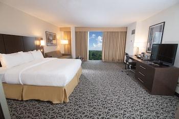 Room, 1 King Bed, Accessible, Bathtub (Non Smoking)