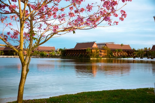 Disney's Polynesian Village Resort image 30