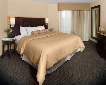 Suite, 1 King Bed, Accessible, Allergy Friendly (Roll-in Shower)