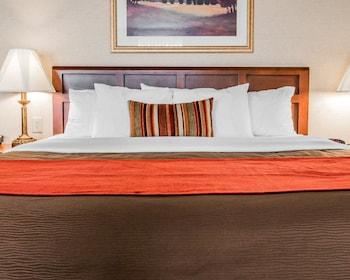 Hotel - Comfort Inn Utica