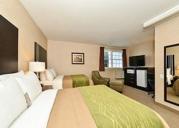 Standard Double Room, 2 Double Beds, Non Smoking