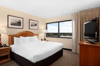 One Bedroom Conference Suite, One King Bed