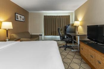Standard Room, 1 Queen Bed, Non Smoking, Second Floor