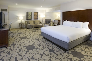 Premium Studio Suite, 1 King Bed