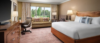 Grand Room, 1 King Bed, Park View