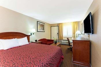 Room, 1 King Bed, Accessible, Bathtub (Non Smoking/Mobility/Grab Bars)