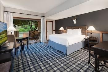 Standard Room, 1 King Bed, Multiple View (Standard King)