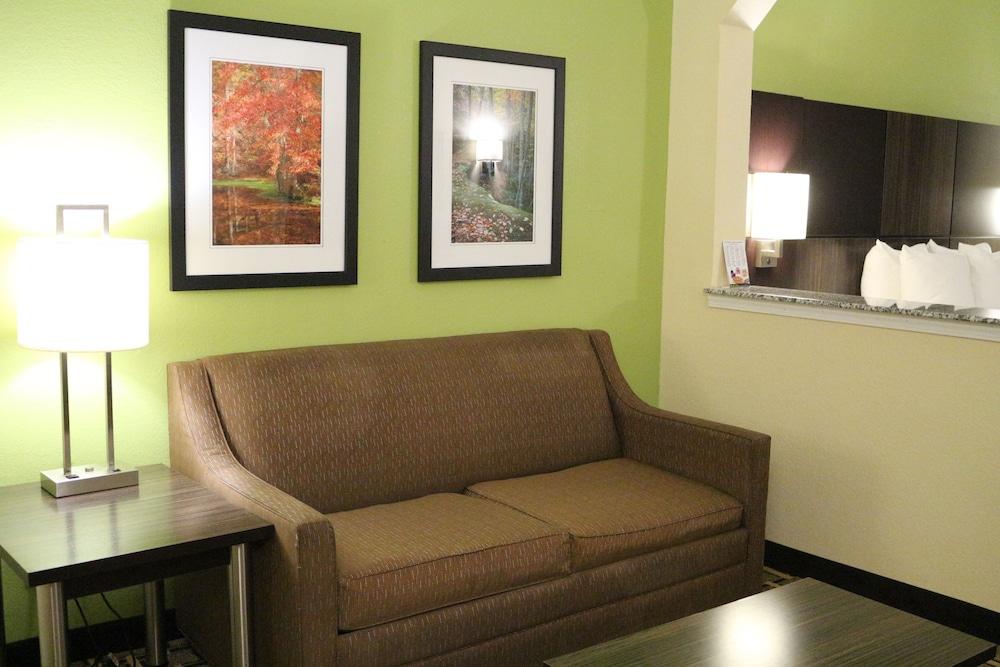 베스트 웨스턴 녹스빌 스위트 - 다운타운(Best Western Knoxville Suites - Downtown) Hotel Image 42 - Living Area