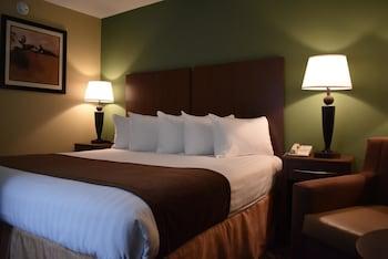 Standard Room, 1 King Bed, Refrigerator & Microwave, Ground Floor