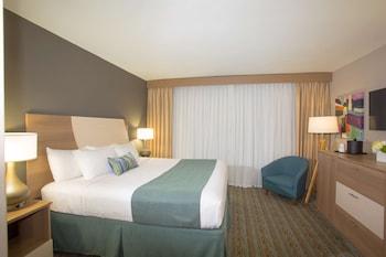 Standard Room, 1 King Bed, Refrigerator, Ocean View