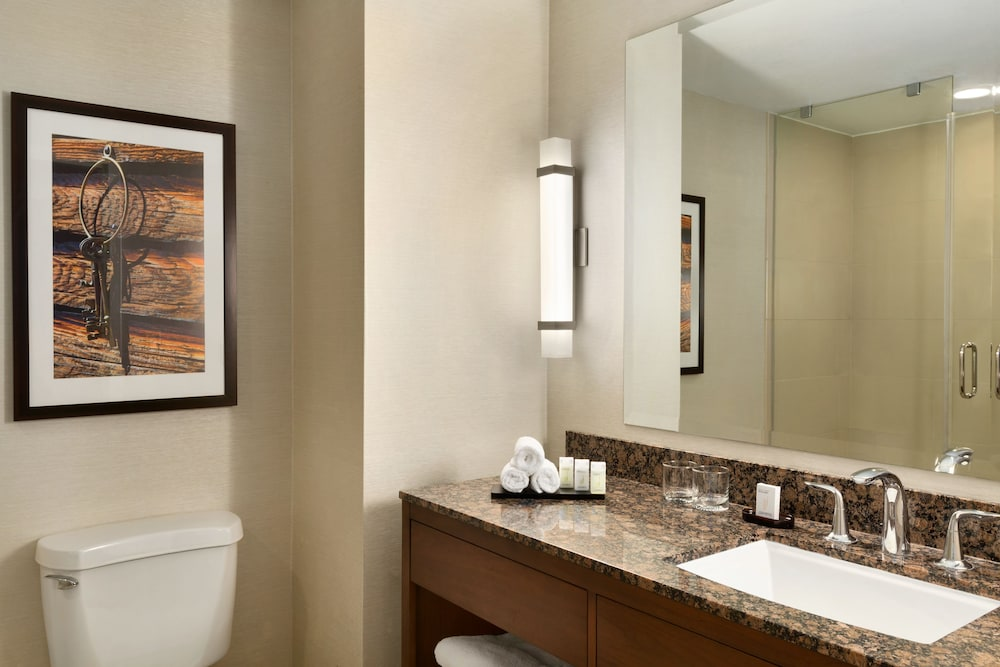 Suite : Suite, 1 King Bed, Accessible, Bathtub (Mobility & Hearing) 17 of 138