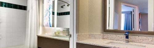 Holiday Inn Resort Orlando Suites - Waterpark image 18