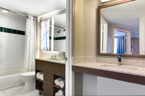 Holiday Inn Resort Orlando Suites - Waterpark image 44