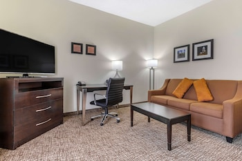 Business Suite, 1 King Bed with Sofa bed, Non Smoking