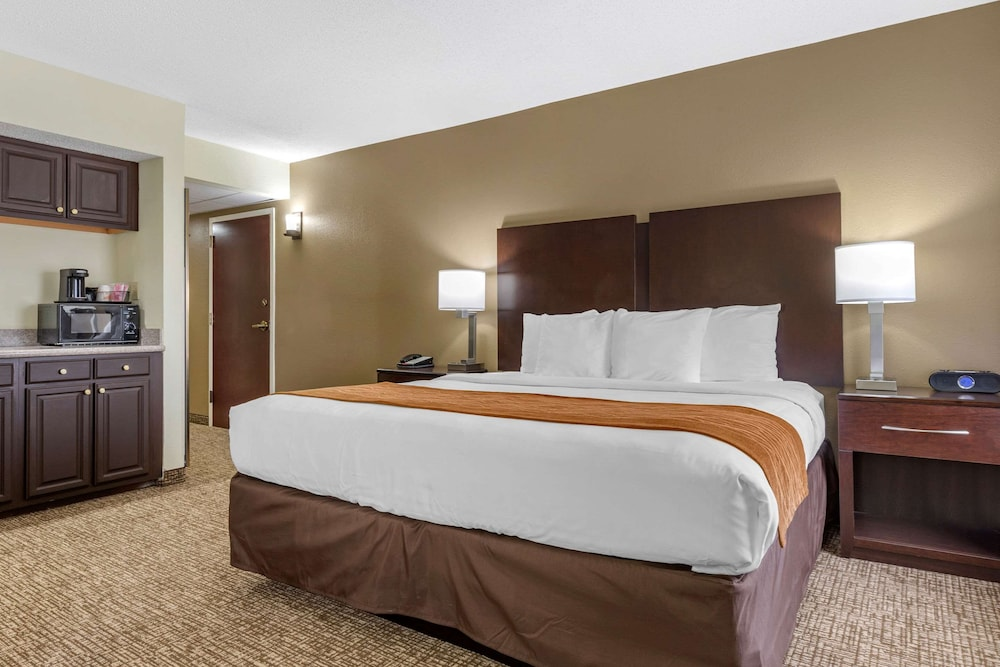 Basic Room, Multiple Beds, Non Smoking