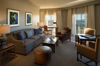 Luxury Suite (Texas)