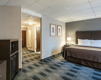 Guestroom at Comfort Inn Ballston in Arlington