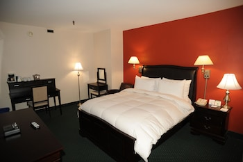 Superior Room, 1 Queen Bed, Non Smoking (Business)