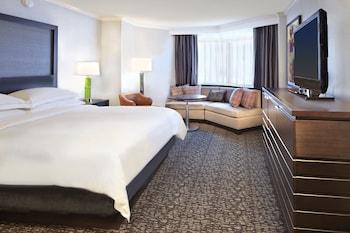 希爾頓明尼亞波利斯 - 聖保羅機場飯店 Hilton Minneapolis-St. Paul Airport