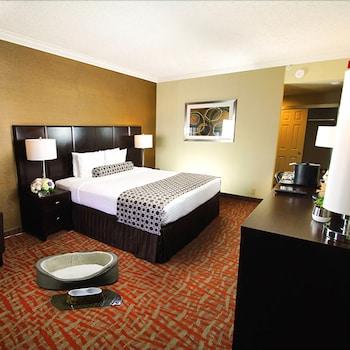 Standard Single Room, 1 King Bed, Balcony (Pet Friendly - Fee Applies)