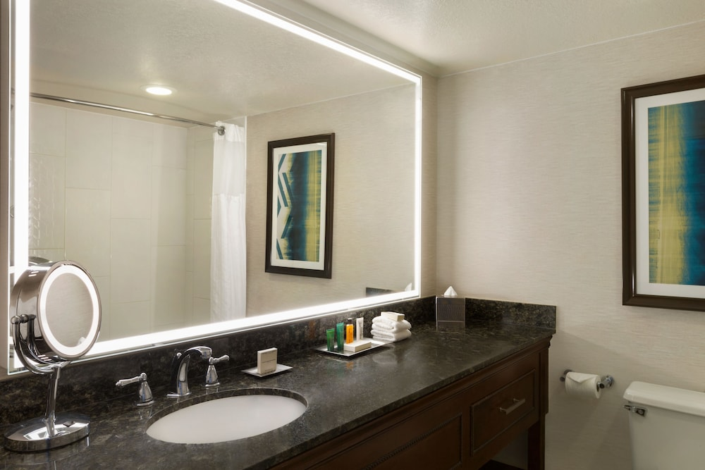 힐튼 포트콜린스(Hilton Fort Collins) Hotel Image 24 - Bathroom