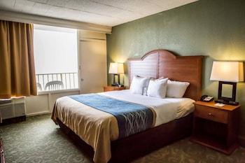 Standard Room, 2 Double Beds, Non Smoking (Ocean Front - Pet Friendly)