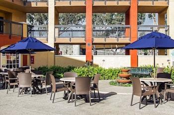 Comfort Inn and Suites San Francisco Airport North - Pool  - #0