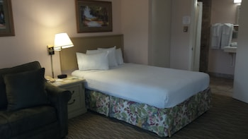 Standard Room, Accessible