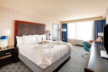 Premium Room, 1 King Bed, Refrigerator & Microwave, Park View