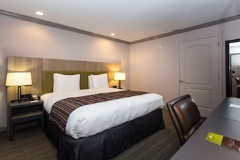 Room, 1 King Bed, Accessible, Non Smoking (Rollin Shower)