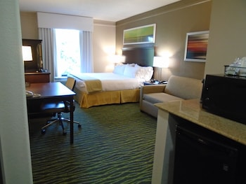 Room, 1 King Bed, Accessible, Bathtub (Hearing, Mobility)