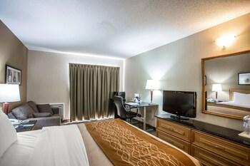 Deluxe Room, 1 Queen Bed with Sofa bed, Refrigerator & Microwave, Ground Floor