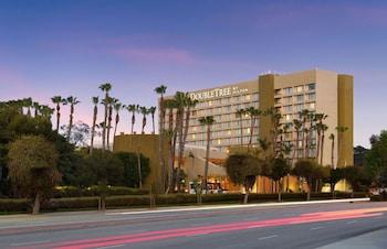 洛杉磯西邊拉迪森飯店 Doubletree by Hilton Hotel Los Angeles Westside