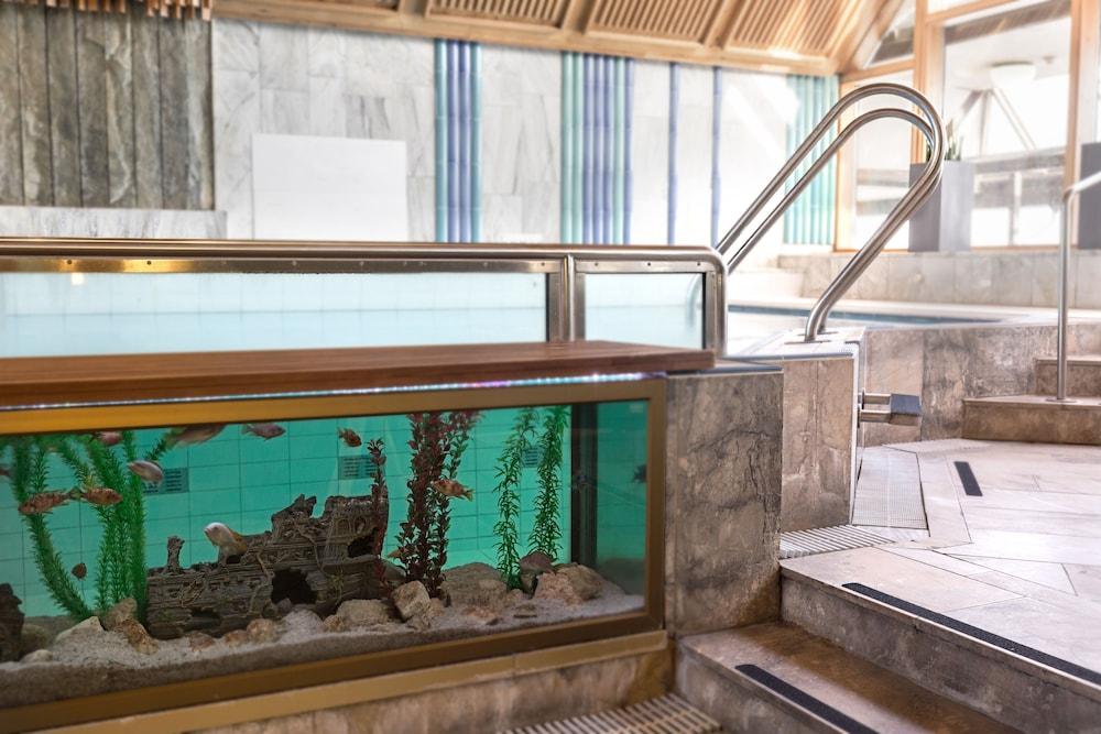 호텔이미지_Indoor Pool