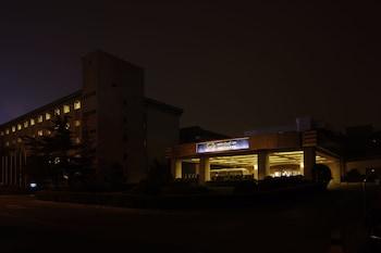 麗都維景飯店