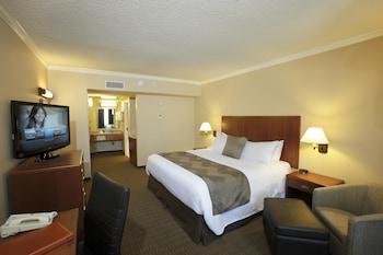 Standard Oda, 1 En Büyük (king) Boy Yatak, Sigara İçilmez, Buzdolabı