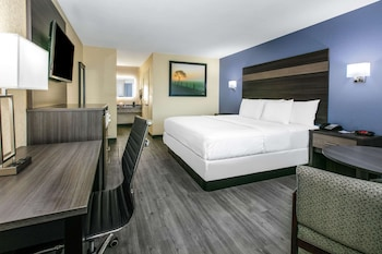Room, 1 King Bed, Accessible, Non Smoking (Mobility, Roll-In-Shower)