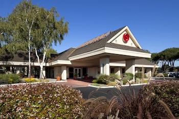 Hotel - Sheraton Sunnyvale Hotel