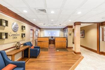Lobby at Comfort Inn Shady Grove - Gaithersburg - Rockville in Gaithersburg