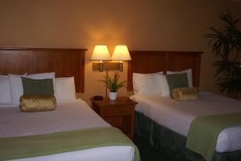 Suite, Multiple Beds (King King)