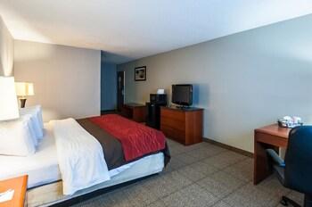 Quality Inn Solomons - Beacon Marina - Guestroom  - #0