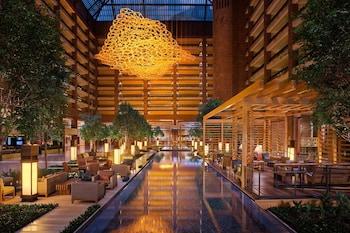 阿納托利希爾頓飯店 Hilton Anatole