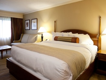 Standard Room, 1 King Bed, Partial View (Hotel King Bed)