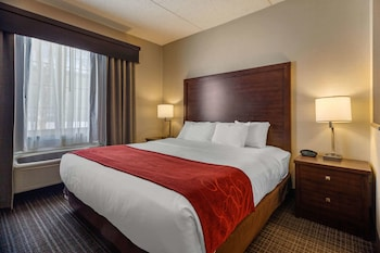 Suite, 1 King Bed with Sofa bed, Non Smoking (Rain shower)